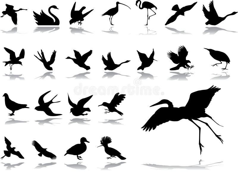 被设置的2个大鸟图标 库存例证