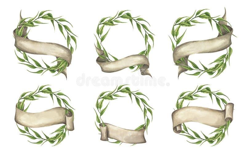 被设置的ofÂ绿色叶子缠绕与丝带 r 皇族释放例证