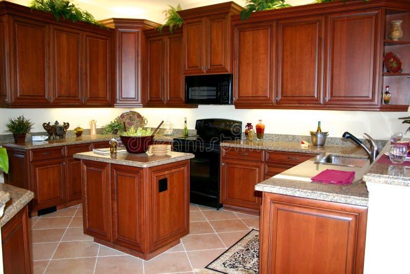 被设计的厨房井 免版税库存图片