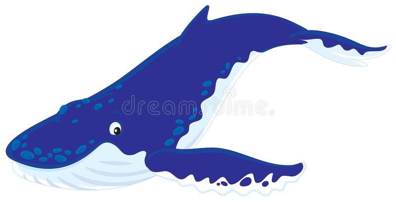 被返回的小丘鲸鱼 皇族释放例证