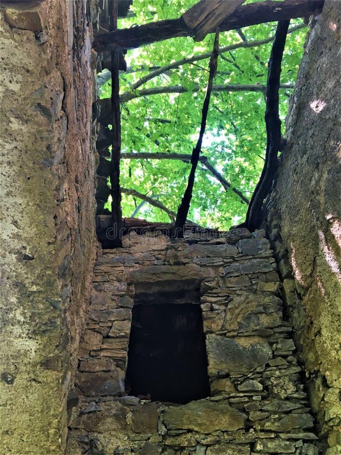 被迷惑的屋顶、射线、光、树和废墟 免版税库存照片