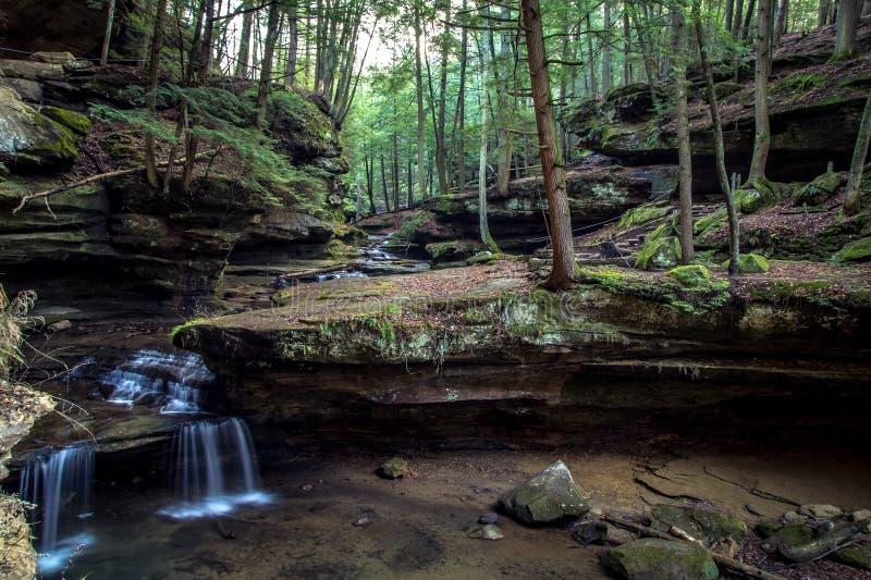 被迷惑的森林瀑布 免版税库存照片