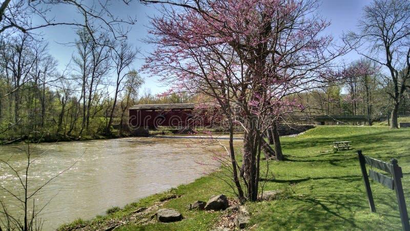 被遮盖的桥在印第安纳公园 库存照片