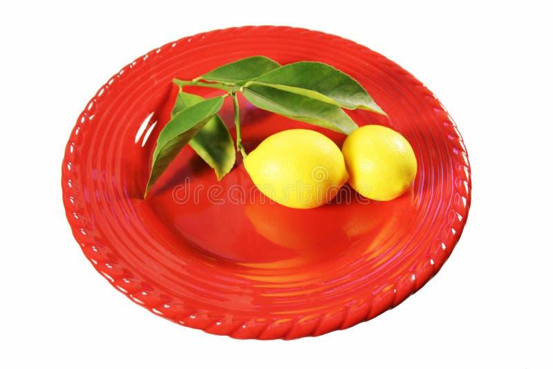 被采摘的柠檬镀红色 库存图片