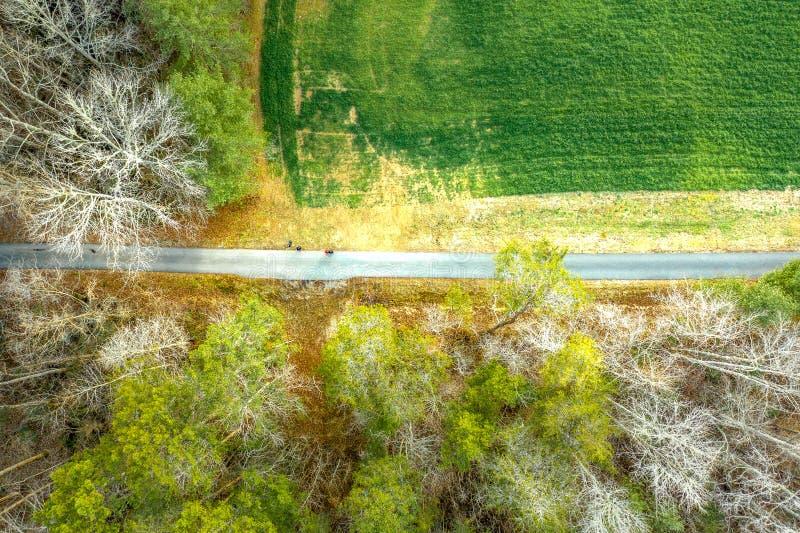 被铺的供徒步旅行的小道鸟瞰图在森林林荫道路的在亚特兰大 图库摄影