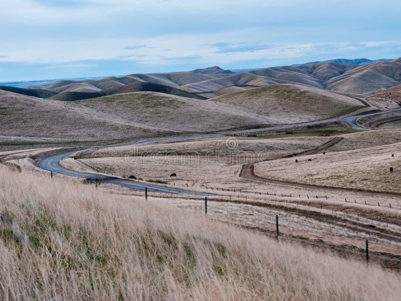 绕被铺的和在绵延山的土路 库存图片