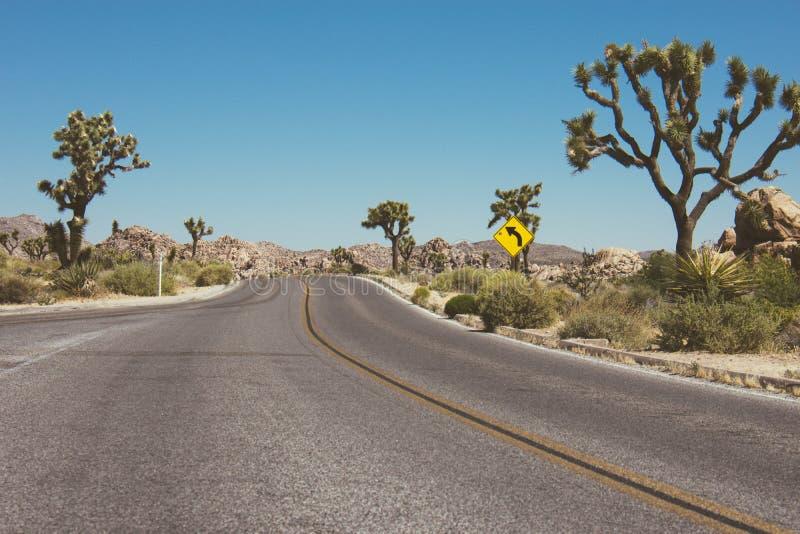 被铺的沙漠路通过约书亚树全国Pa 免版税库存照片