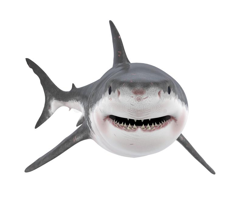 被隔绝的大白鲨鱼 库存例证
