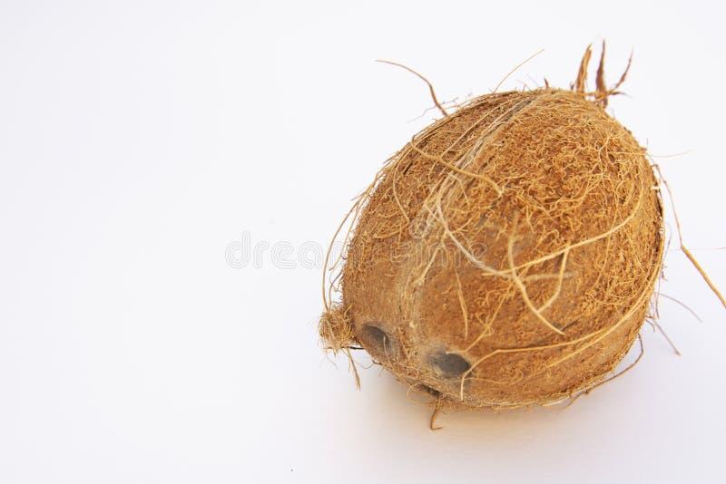被隔绝的整个椰子,鸡尾酒的,白色背景异乎寻常的果子 库存图片