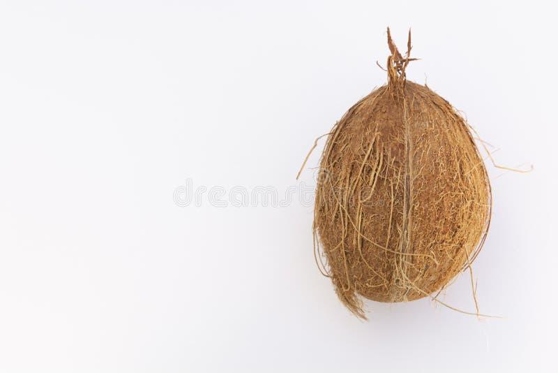 被隔绝的整个椰子,鸡尾酒的,白色背景异乎寻常的果子 免版税库存照片