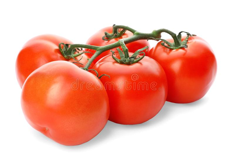 被隔绝的新鲜的成熟红色蕃茄分支  免版税库存图片