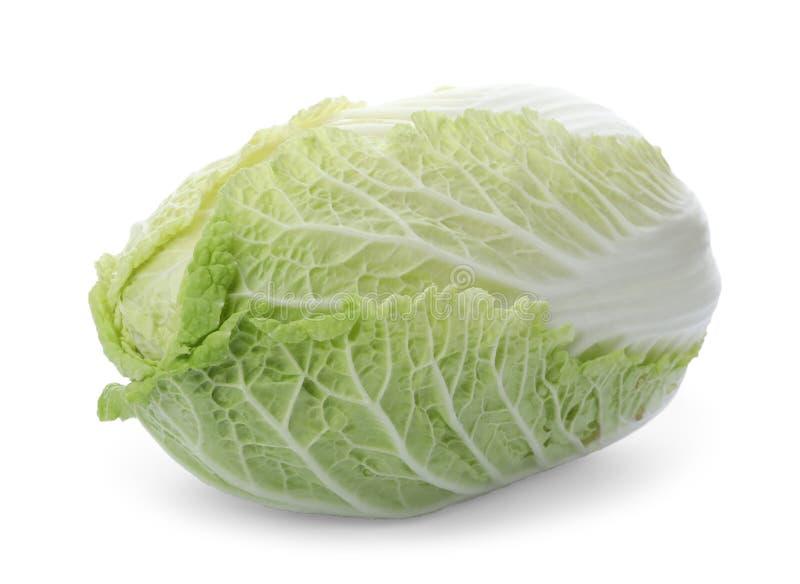 被隔绝的新鲜的成熟napa圆白菜 库存图片