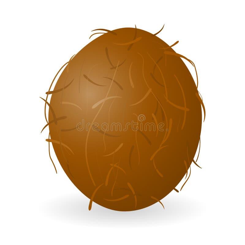 被隔绝的椰子传染媒介 皇族释放例证