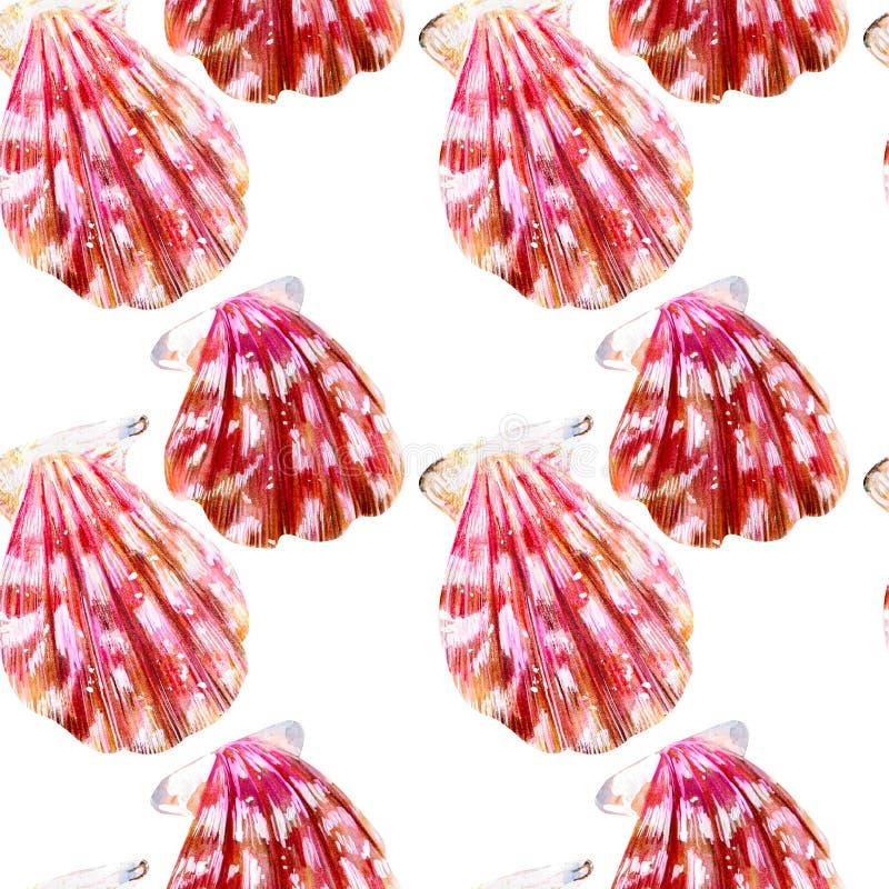 被隔绝的海壳扇贝的无缝的样式 向量例证
