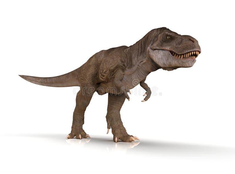 被隔绝的详细的暴龙雷克斯恐龙 向量例证