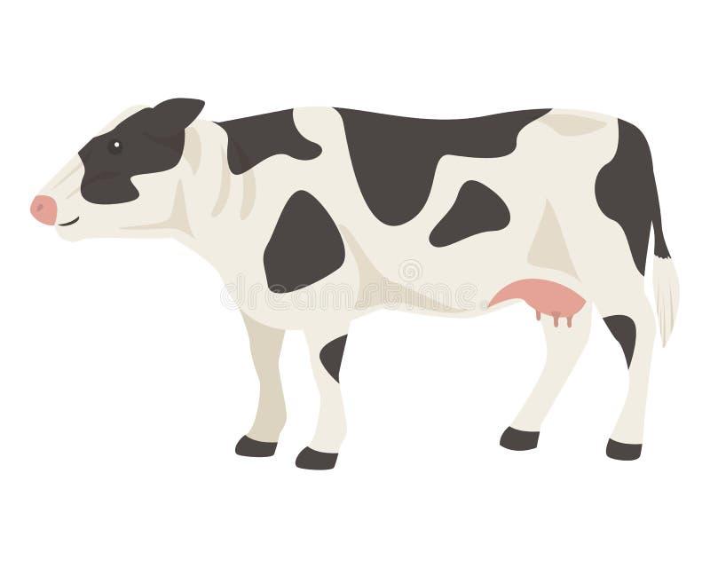 被隔绝的黑白母牛 向量例证