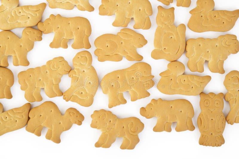 被隔绝的动物形状的薄脆饼干 库存图片