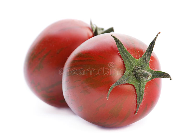 被隔绝的布朗蕃茄 库存图片