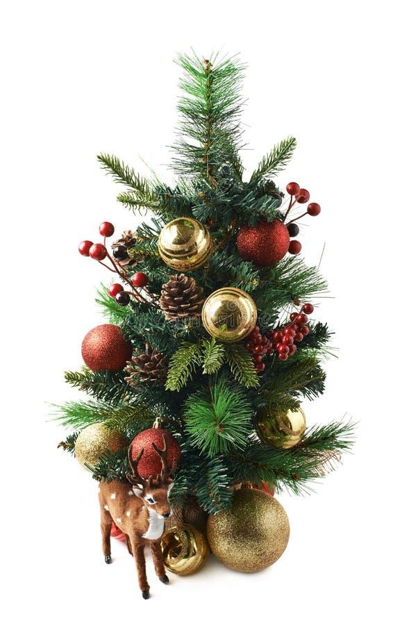 被隔绝的微小的圣诞树构成 库存图片