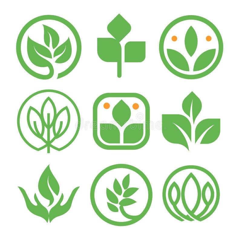 被隔绝的抽象绿色商标收藏 圆形自然元素略写法集合 在人的手象的叶子 向量例证