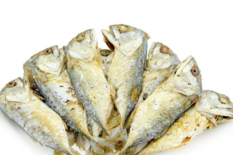 被隔绝的油煎的fishs 免版税库存图片