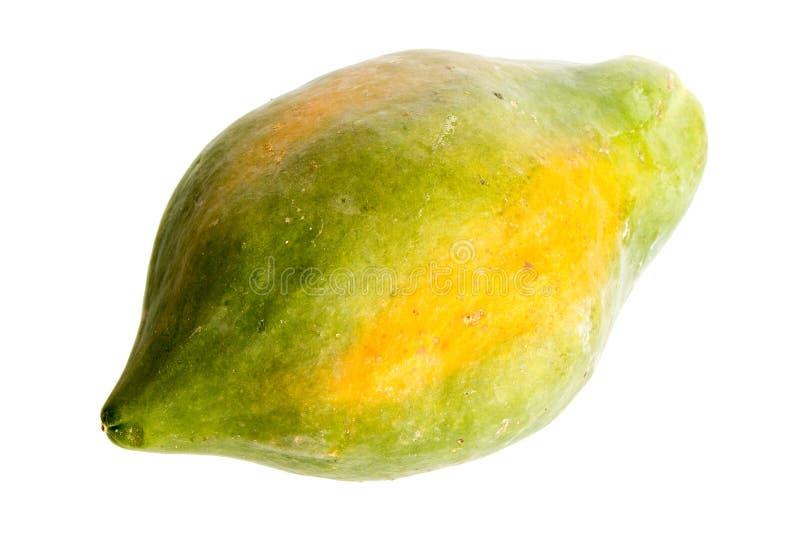 被隔绝的番木瓜果子 库存照片