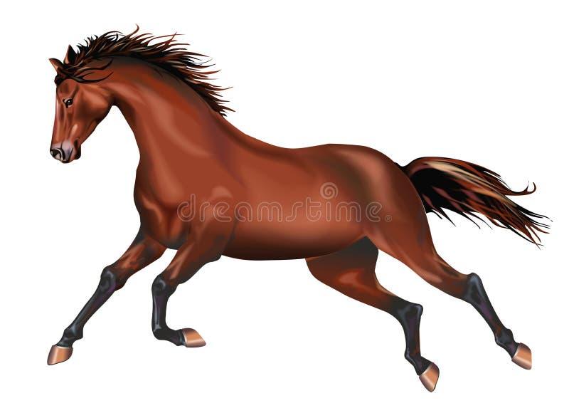 被隔绝的疾驰的马 向量例证