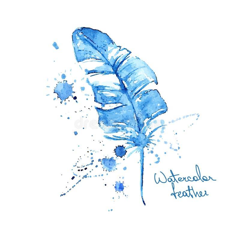 被隔绝的蓝色水彩羽毛 向量例证