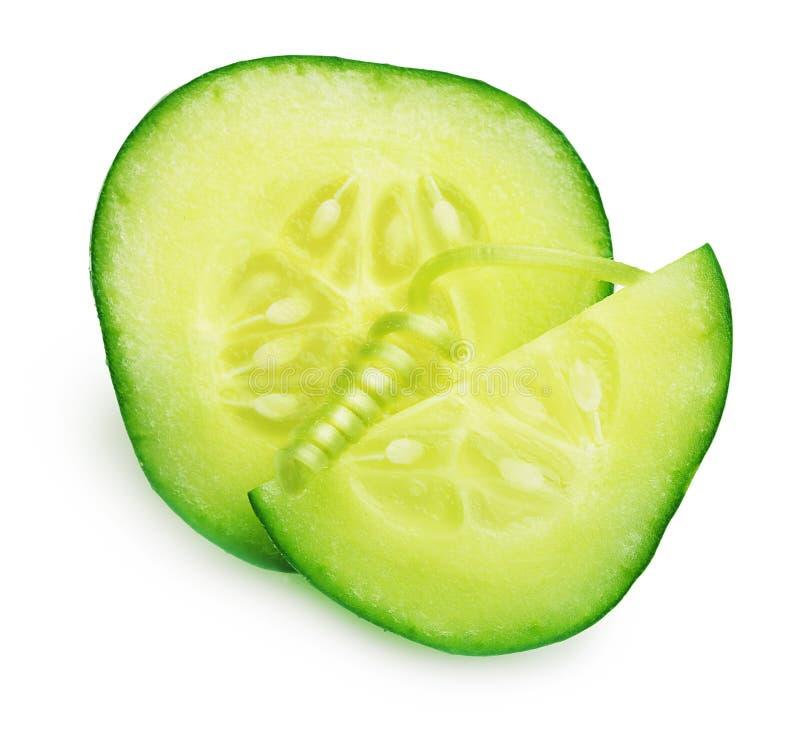 被隔绝的绿色黄瓜切片 免版税图库摄影