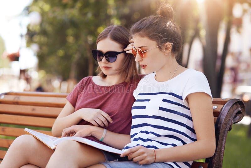 被集中两位女小学生的室外看法严肃读课本殷勤地,尝试对教训的learm材料,享用新鲜空气 图库摄影