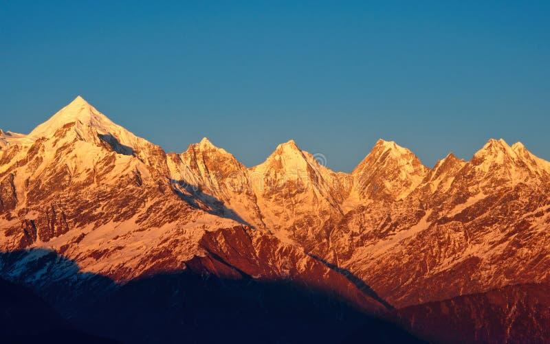 被雪复盖的山峰金黄树荫  免版税库存照片