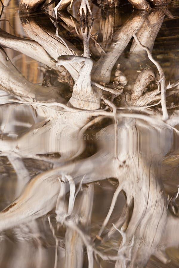 被风化的反映的老起波纹的表面结构&# 免版税库存图片