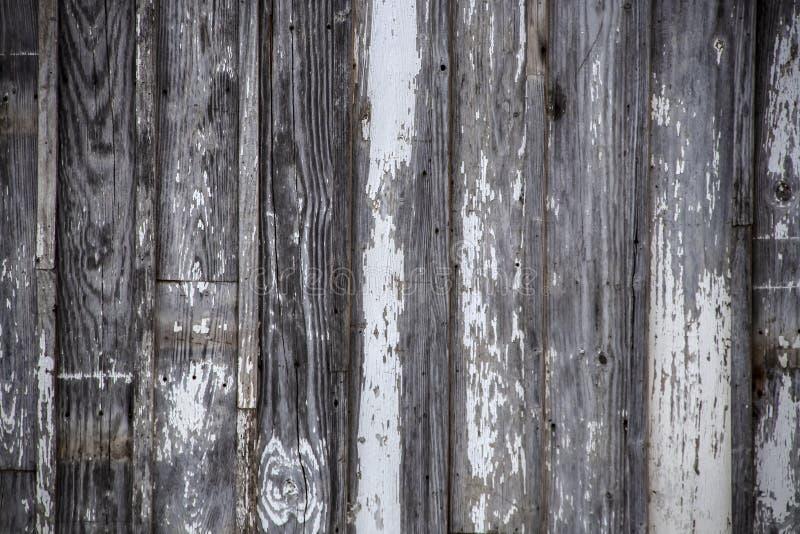 被风化的木头被索还的垂直的板条水平的背景与切削的和被剥皮的白色油漆-拷贝的室的 库存图片
