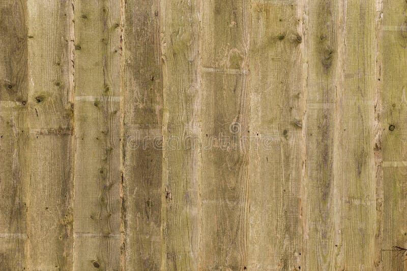 被风化的木篱芭镶板背景 免版税库存图片