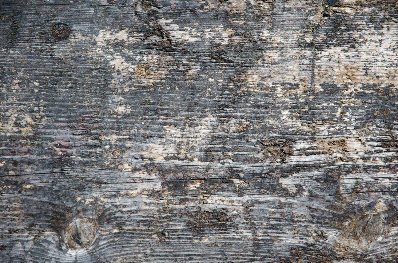 被风化的涂焦油木表面 免版税库存照片