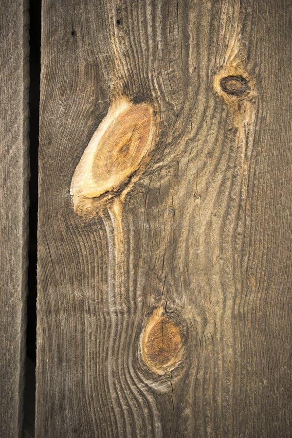 被风化的谷仓墙壁木五谷板条桔子结 免版税库存照片