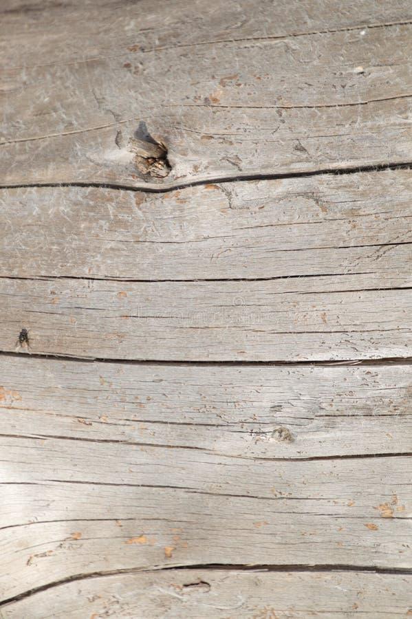 被风化的银色雪松木材木背景墙纸 库存照片
