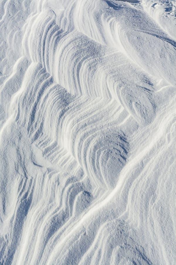 被风吹扫的雪 免版税库存照片