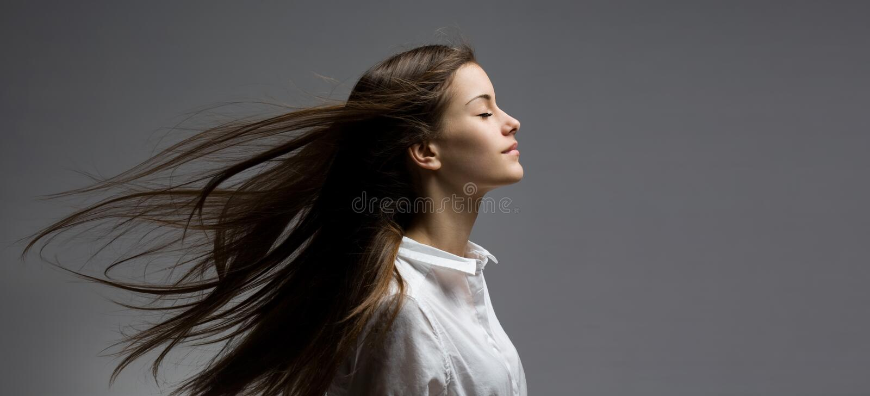 被风吹扫秀丽深色的头发 免版税库存照片
