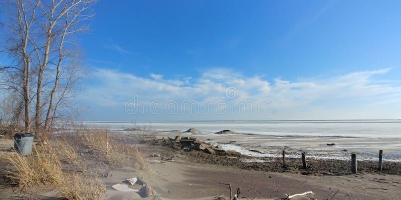被风吹扫结冰的伊利湖在冬天 免版税库存照片