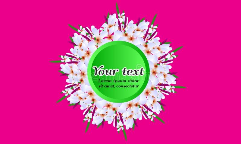 被说明的传染媒介花卉圆框架白色春天开花 向量例证