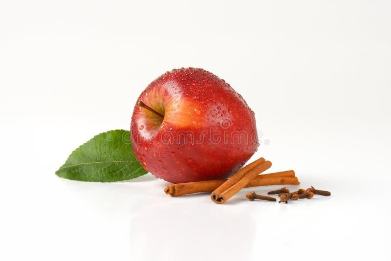 被洗涤的红色苹果和香料 库存图片