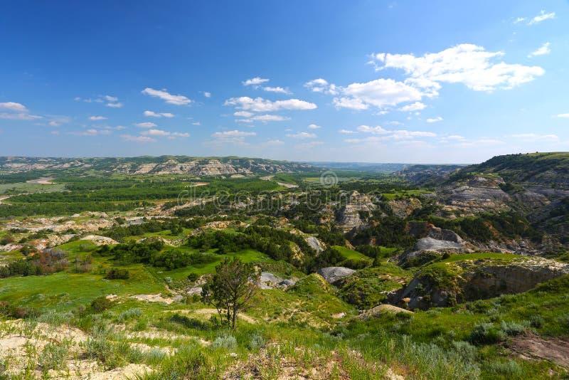 被绘的峡谷在荒地,西奥多・罗斯福国家公园 图库摄影