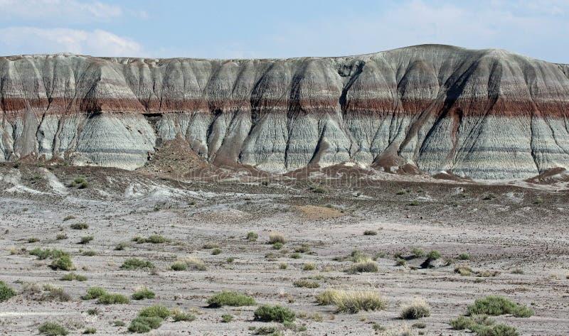 被绘的沙漠 库存照片
