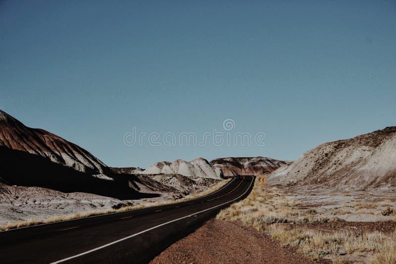 被绘的沙漠 免版税库存照片