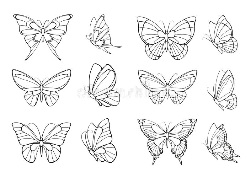 被画的蝴蝶递集 库存例证