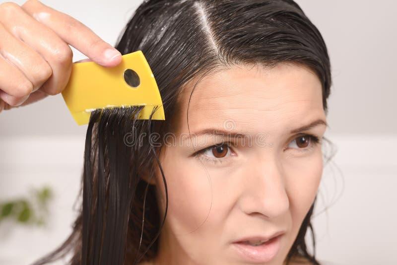 裁减在她的头发的妇女虱子 免版税库存图片