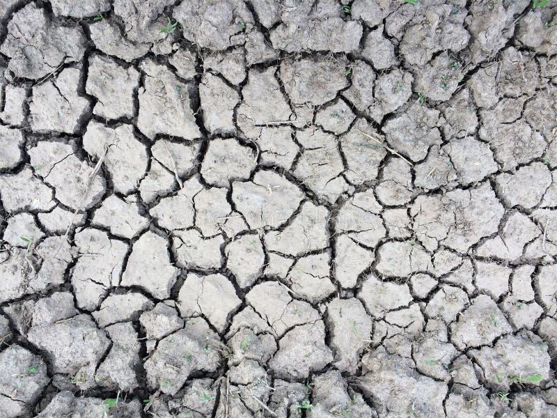 裂化的干燥地球 免版税图库摄影