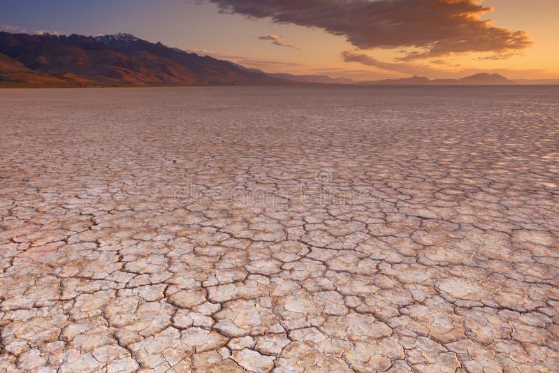 破裂的地球在遥远的Alvord沙漠,俄勒冈,日出的美国 免版税库存图片