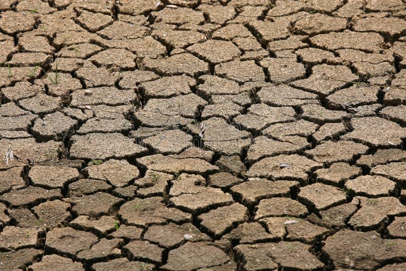 破裂的地面背景和空的区域文本、干燥地面和地面热表面的在夏天,热四周在破裂附近 免版税库存照片